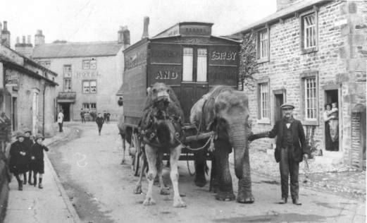 Elephants-in-HighStreet-Gargrave-1912